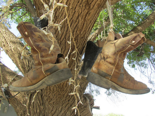 cowboy boots, Don E Brook Farms