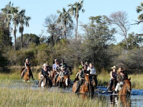 Aardvark Safaris, Okavango Delta, Botswana