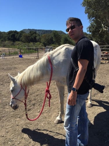 Equine Perspective, Carmel Valley Ranch, horse