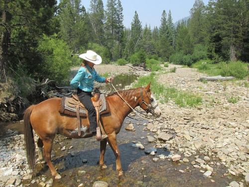 Nancy Brown, Lake Tahoe, horseback riding