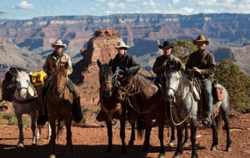 unbranded, grand canyon, horses