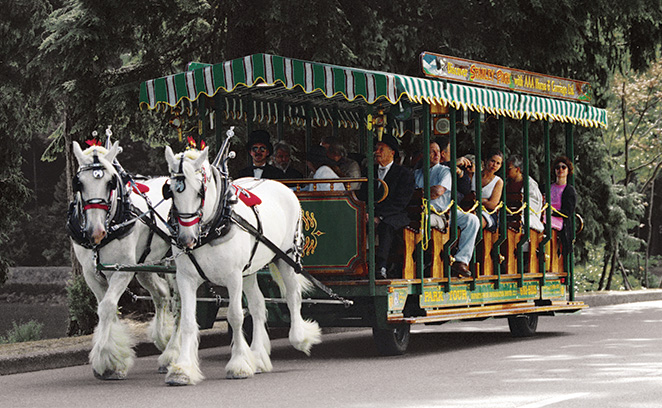 horse carriage, stanley park, vancouver