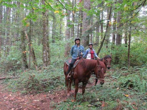 Dream Ridge Stables, horseback riding, hip replacement