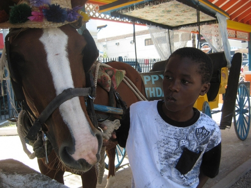 carriage ride, bahamas carriage ride, nassau carriage ride