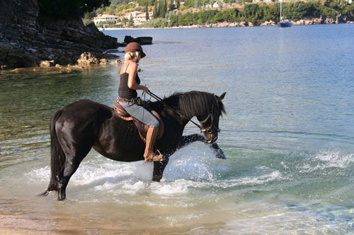 Alison Green, horse, corfu, greece