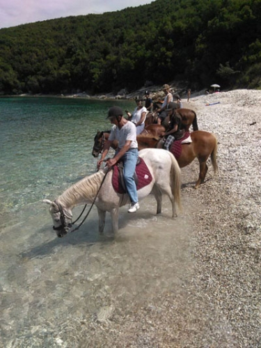 horseback ride, beach, corfu
