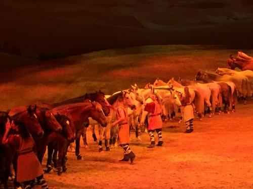 horses, odyesseo, cavalia, horse show