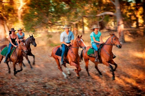 horseback riding, western australia