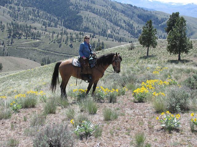 nancy d brown, cowgirl, triple creek ranch