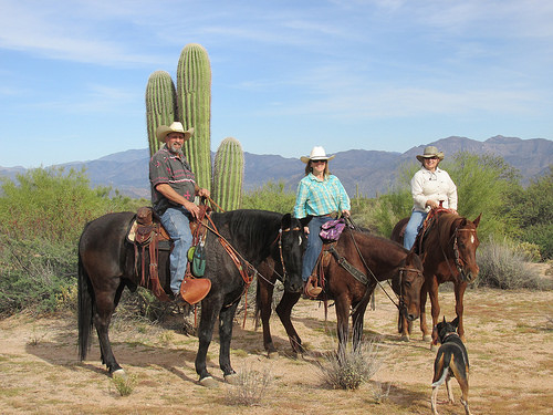 arizona cowboy college, horseback riding vacation, arizona horseback riding