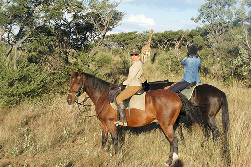 cecile auersperg, out in africa encounters, south africa, horse safari