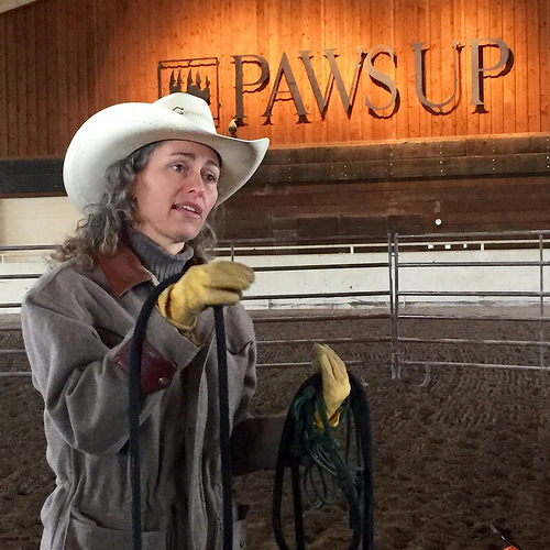 stacy westfall, cowgirl hall of fame, westfall horsemanship, the resort at paws up, montana