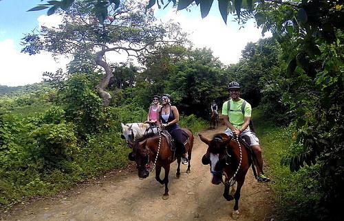 El Yunque National Forest, horseback ride, san juan, puerto rico