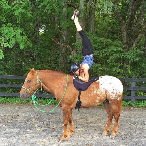 angela nunez, horse yoga, yoga on horseback, yoga, horse