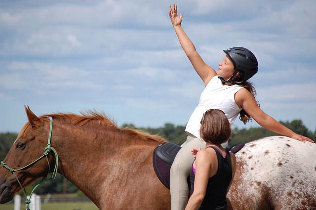 equine yoga, horse yoga, yoga on horseback