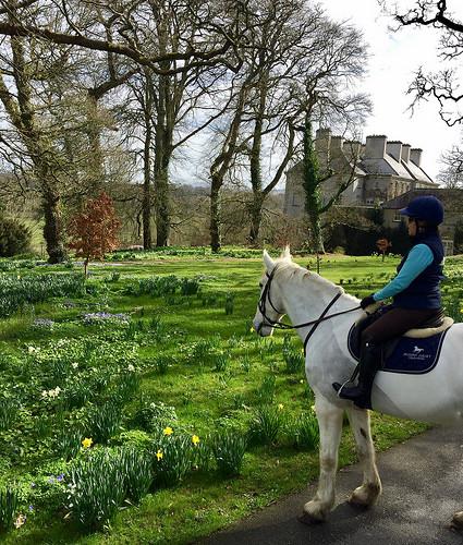 mount juliet, kilkenny estate, horseback riding mount juliet, equestrian holiday mount juliet