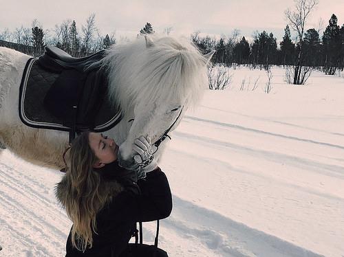 alyona belozerova, icelandic horse, lapland, horse riding, horseback riding, horseback riding lapland
