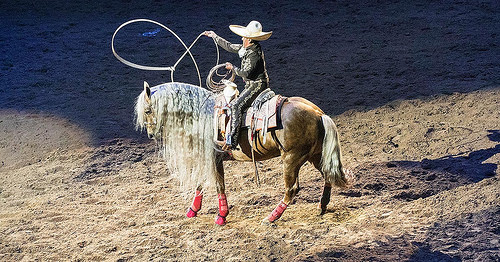 charro, horse, palomino, san antonio rodeo, san antonio, texas