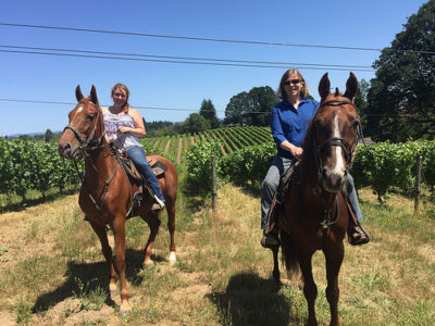 equine wine tour, plum hill vineyards, horseback riding near portland, horseback riding tualatin valley, horse riding willamette valley, oregon