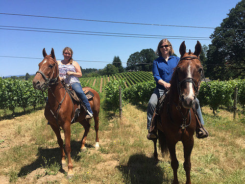 Horseback Riding Near Portland Oregon Writing Horseback