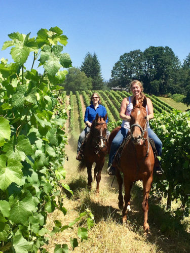 horseback riding, willamette valley horseback riding, horseback riding, equine wine tour, willamette valley, tualatin valley, oregon, nancy d brown