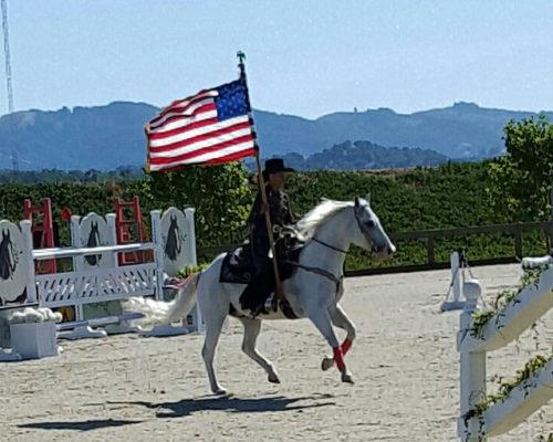 christine shepherd, usa flag, equestrian, horse, drill team