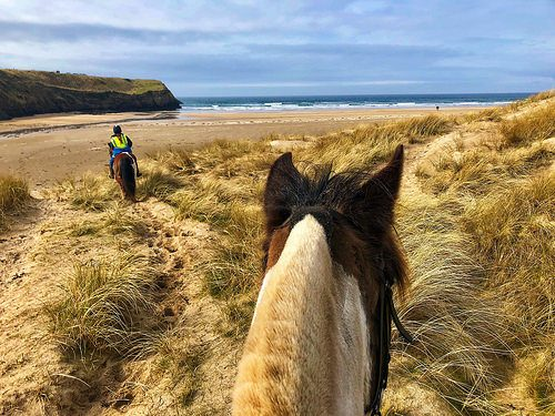 horseback riding, donegal equestrian centre, donegal equestrian center, tullan strand, county donegal, ireland