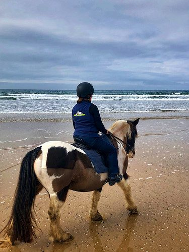nancy d brown, horseback riding, irish cobb, donegal equestrian centre, county donegal, ireland
