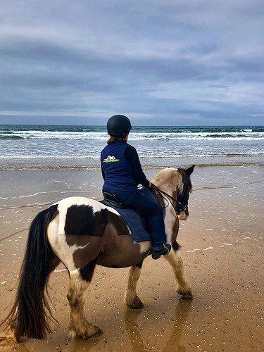 nancy d brown, horseback riding, irish cobb, donegal equestrian centre, county donegal, ireland