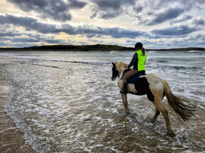 ursula schweiger, horse, island view riding stables, beach ride, county sligo, ireland
