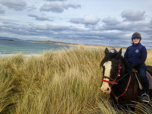nancy d brown, horse, island view riding stables, grange, county sligo, ireland