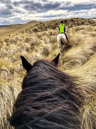 horseback ride, island view riding stables, dunes, grange, county sligo, ireland, wild atlantic way