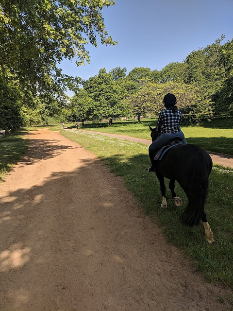 learn more about where to go horse riding in london, horseback riding hyde park, horseback riding vacation london, england