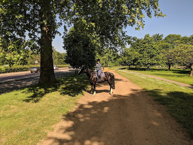how to go horse riding in london, where to go horseback riding in london, horseback riding in hyde park, horseback riding vacation in london