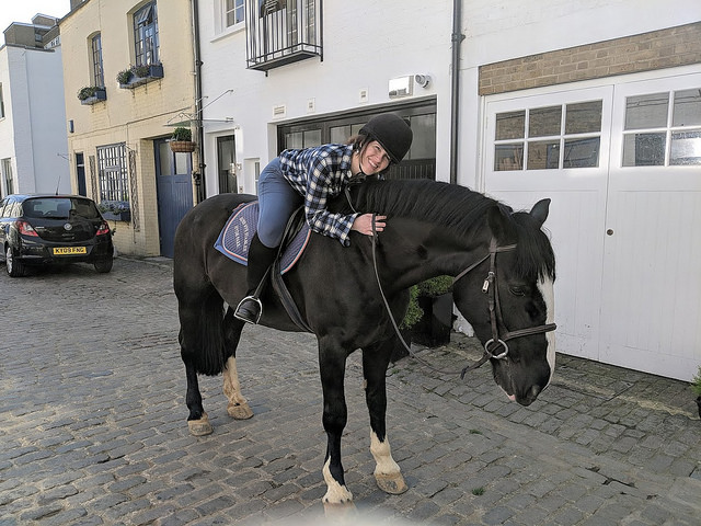 how to go horse riding in central london, ross nye stables horseback riding, anna harrison riding irish cob