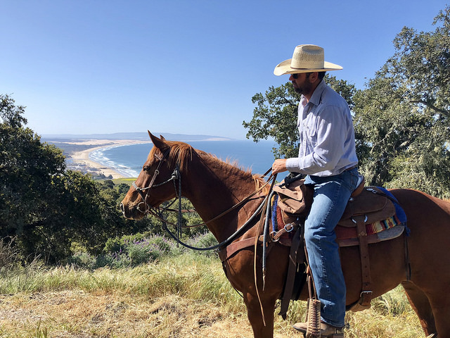brian hallett, horseback ride, central coast trail ride, pismo preserve, pismo beach, central coast, california, quarter horse, cowboy