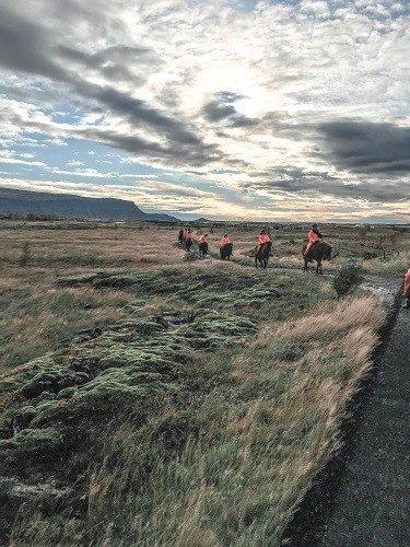 horseback riding, eldhestar, Reykjavik, icelandic horse trail ride, iceland