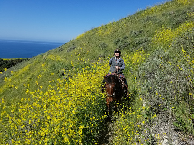 nancy d brown, horseback riding, central coast trail rides, pismo preserve, pismo beach, california central coast, nancy brown equestrian