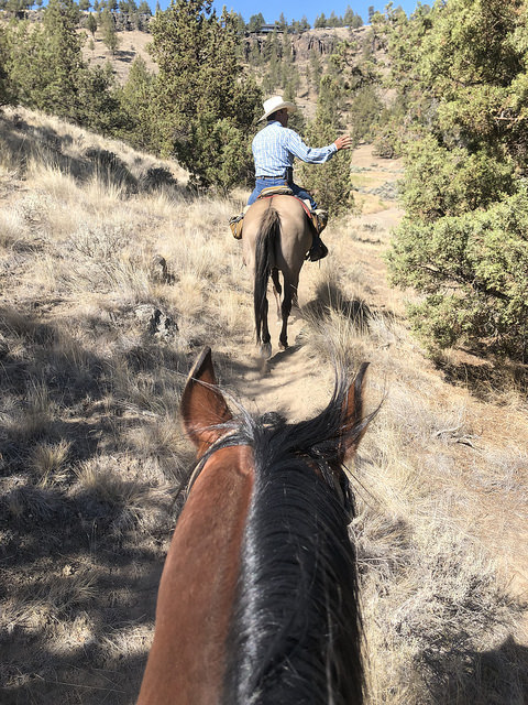 smith rock trail rides, horseback riding central oregon, visit central oregon, horse ride
