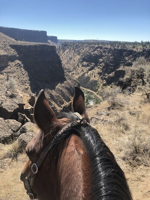 smith rock trail rides in central oregon, crooked river ranch, horseback ride crooked river, visit central oregon