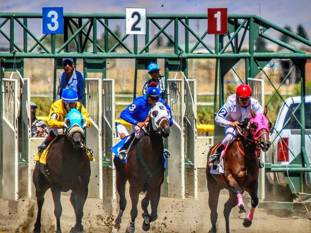ely nevada white pine horse races