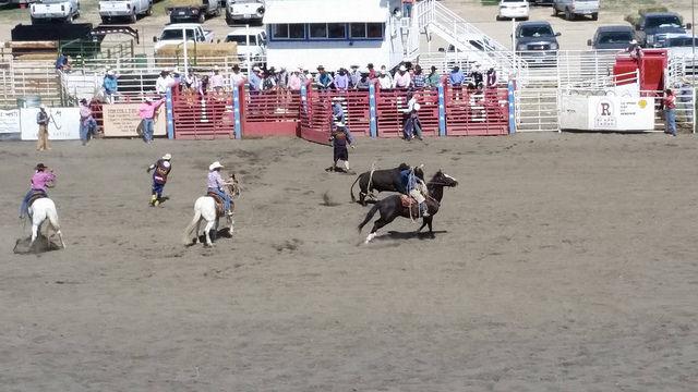 Ely Nevada White Pine Horse Races - Writing Horseback