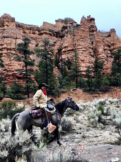 kevin magee, rubys horseback adventures, rubys grand adventure, red cayon utah, cowboy, wrangler, horseback riding
