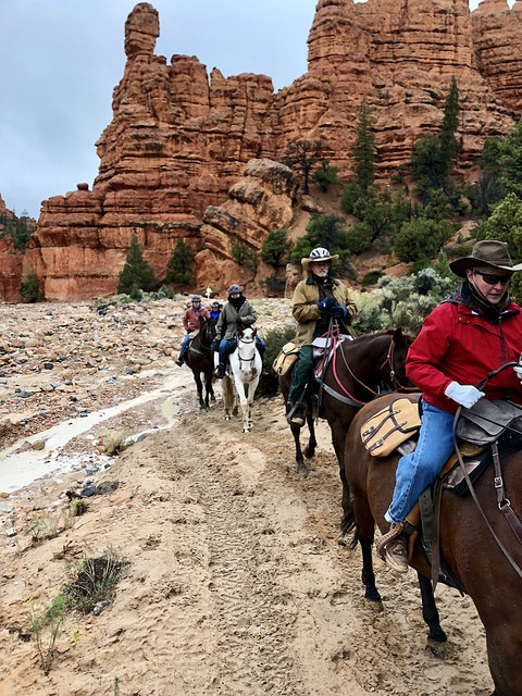 horseback riding riding losse canyon, rubys horseback adventures, bryce canyon horse rides, southern utah trail ride