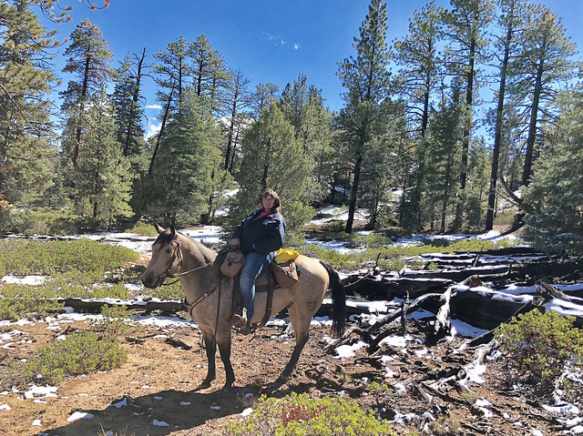 teri nash, bryce canyon horse rides, rubys horseback adventures, rubys grand adventures, horseback riding southern utah