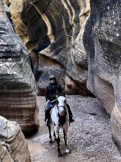nancy d brown, horseback riding vacation, grand staircase escalante national monument, rubys horseback adventures, utah