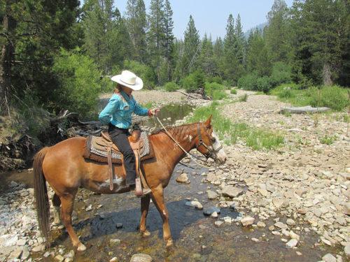 nancy brown, cowgirl, horseback riding alpine meadows, lake tahoe horse trail ride, because of horses