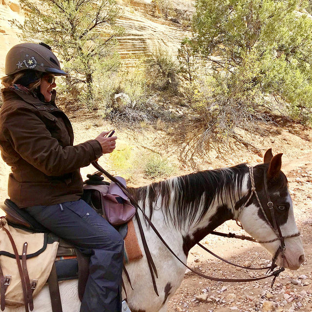 nancy d brown, equestrian travel writer nancy brown, writing horseback on because of horses podcast