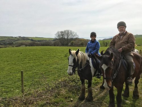 equestrian travel expert nancy d brown, horse riding in pembrokeshire wales, marros riding center, welsh cob, gypsy cob horse