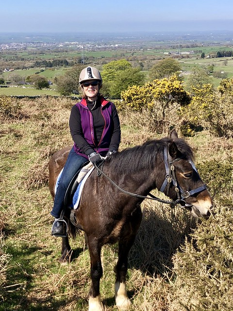 equestrian travel expert nancy d brown, welsh cobb horse, horseback riding in snowdonia national park